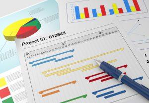 Vertriebssteuerung - Projektplan