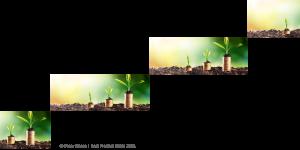 Vier Wachstumsquellen